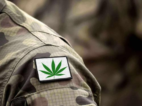 Everything Veterans with PTSD Need to Know About Medical Marijuana